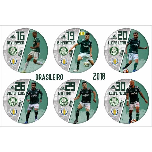 Jogo do Palmeiras - Campeão Brasileiro 2018