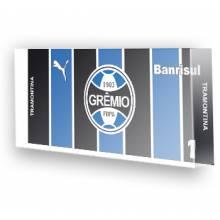 Goleiro do Grêmio