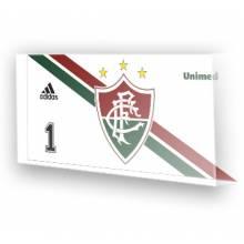 Goleiro do Fluminense 2