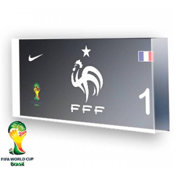 Goleiro da França - 2014
