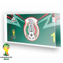 Goleiro do México - 2014