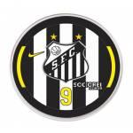 Jogo do Santos - 2015