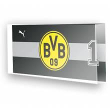 Goleiro do Borussia Dortmund