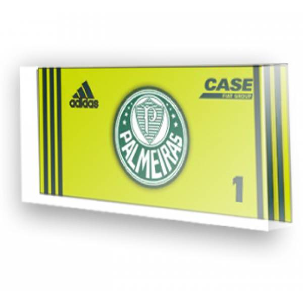 Goleiro do Palmeiras