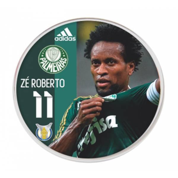 Jogo do Palmeiras - Campeão Brasileiro 2016